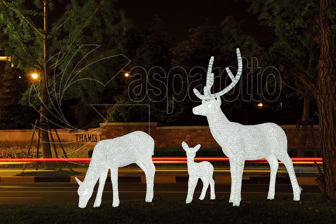 Cervo bianco luminoso